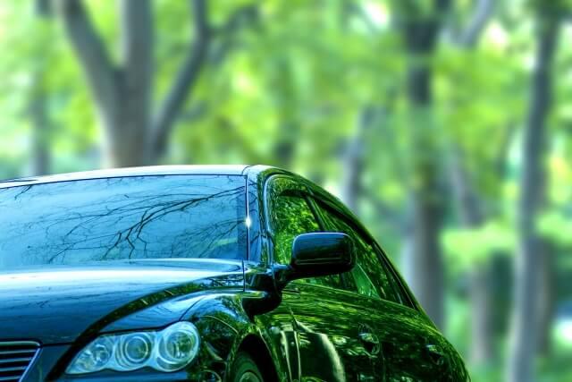 森の中を走る車